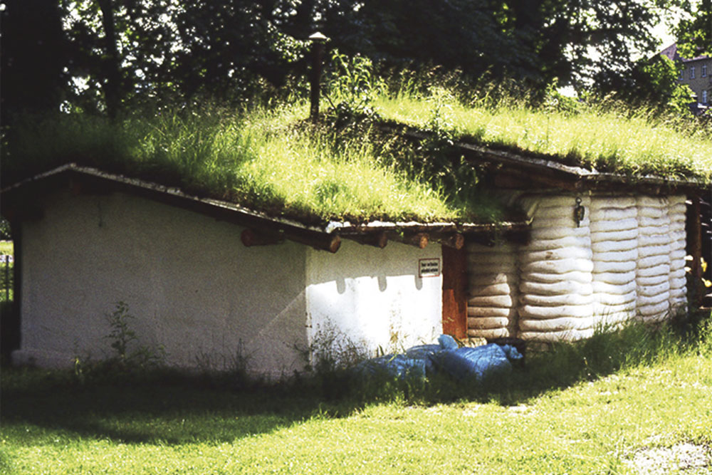 Erstes Gründach in Kassel