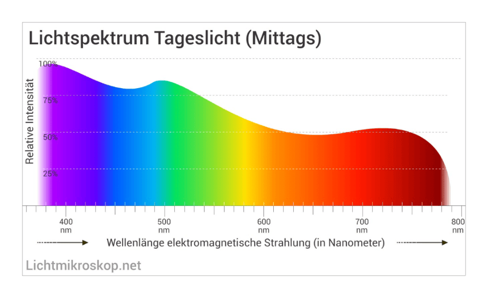 lichtspektrum-mittags